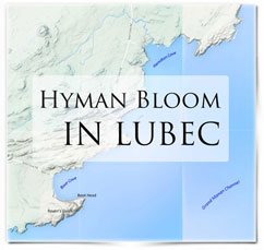 HB-InLubec-small-logo