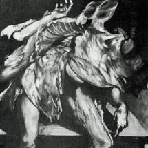 Cadaver on Table (1952)